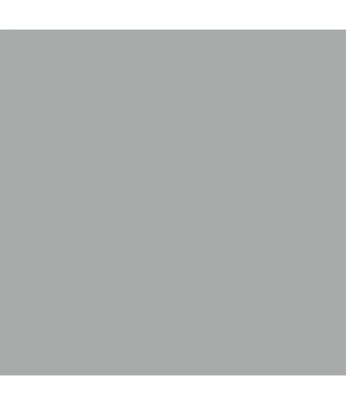 gris titanio